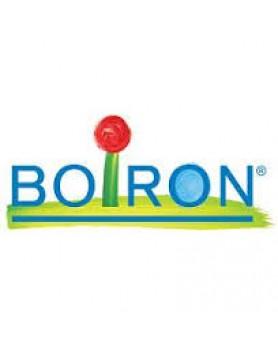 BOIRON Aesculus Hippocast Macerato Glicerico 60ml
